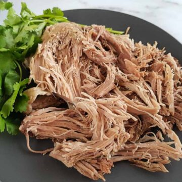 pulled pork on a plate.