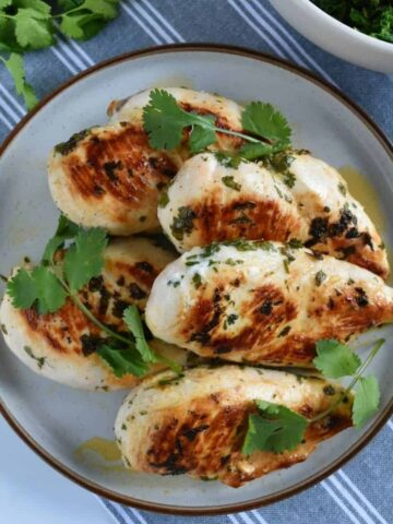 Cilantro lime chicken on a plate.