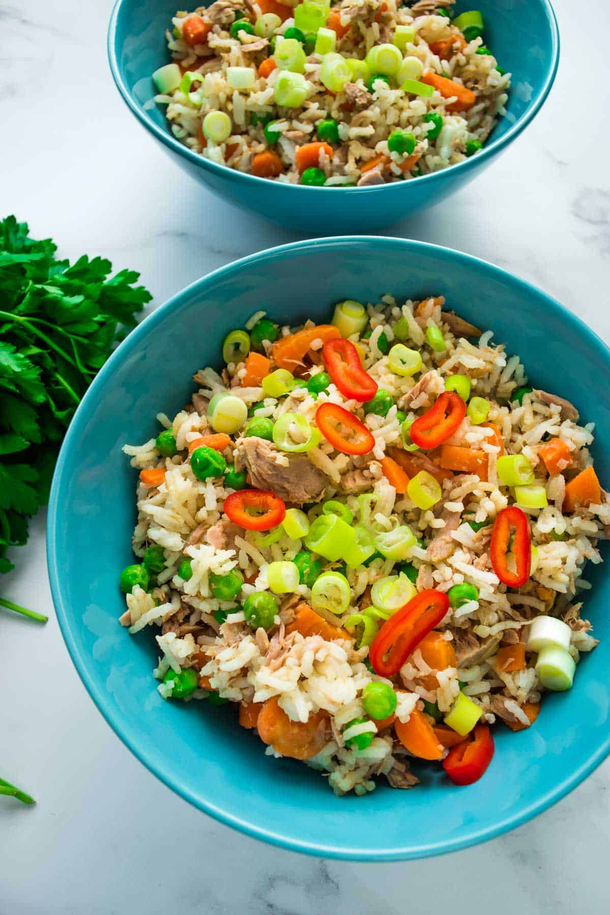 Close up of a bowl with tuna fried rice.