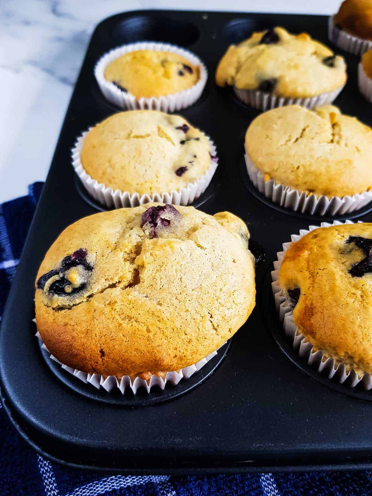 Healthy lemon blueberry muffins in a muffin pan.