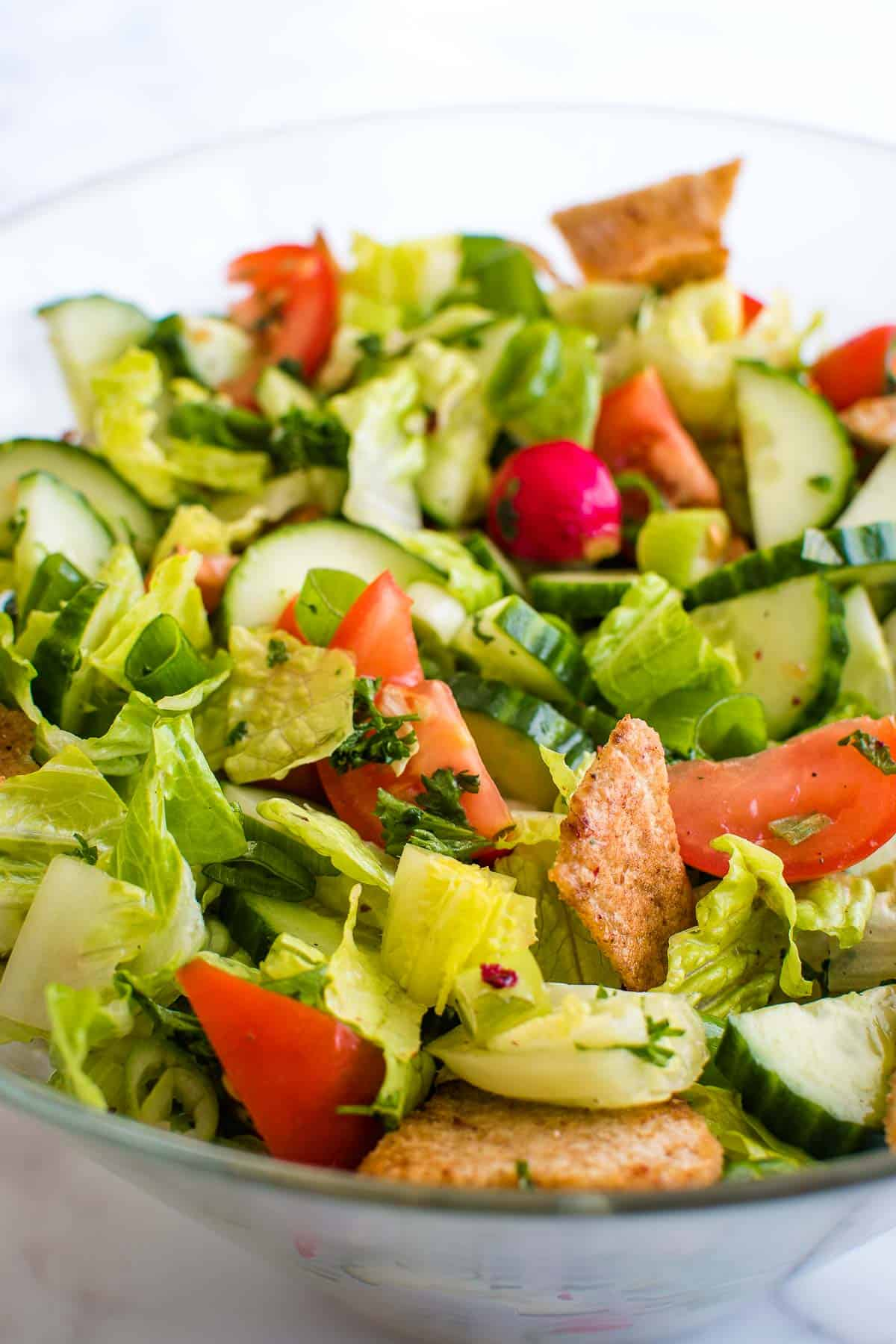 Close up showing mixed Lebanese Fattoush salad.