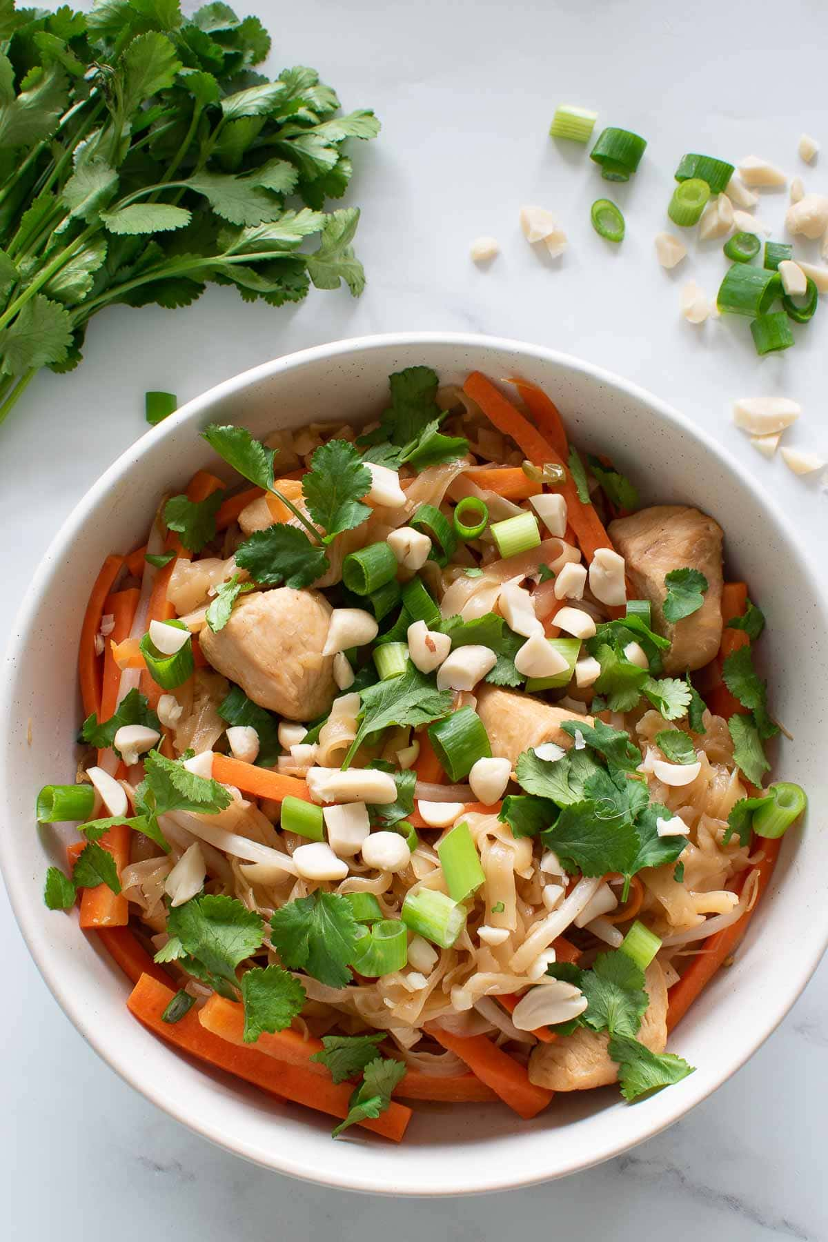Close up of a bowl of pad thai with cilantro, scallions and peanuts on top.
