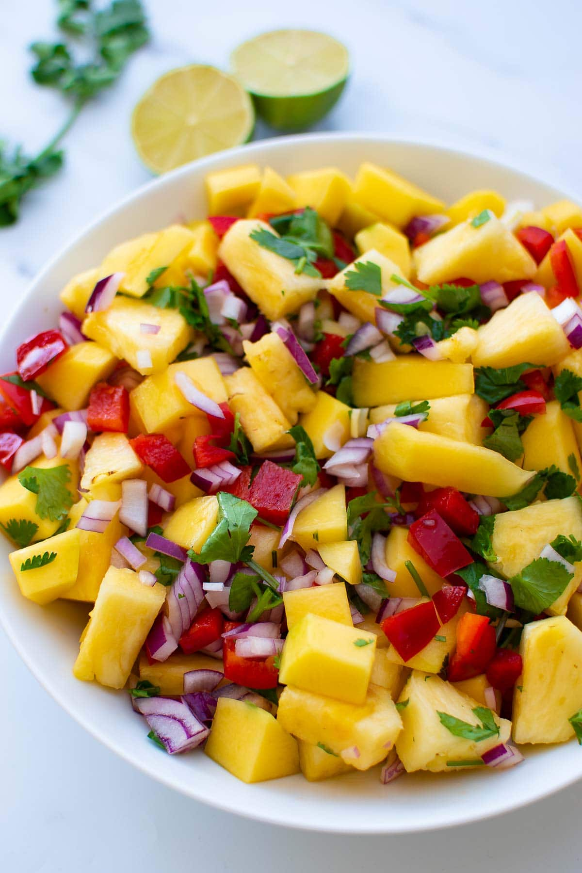 Colorful bowl of mixed fruit salsa.