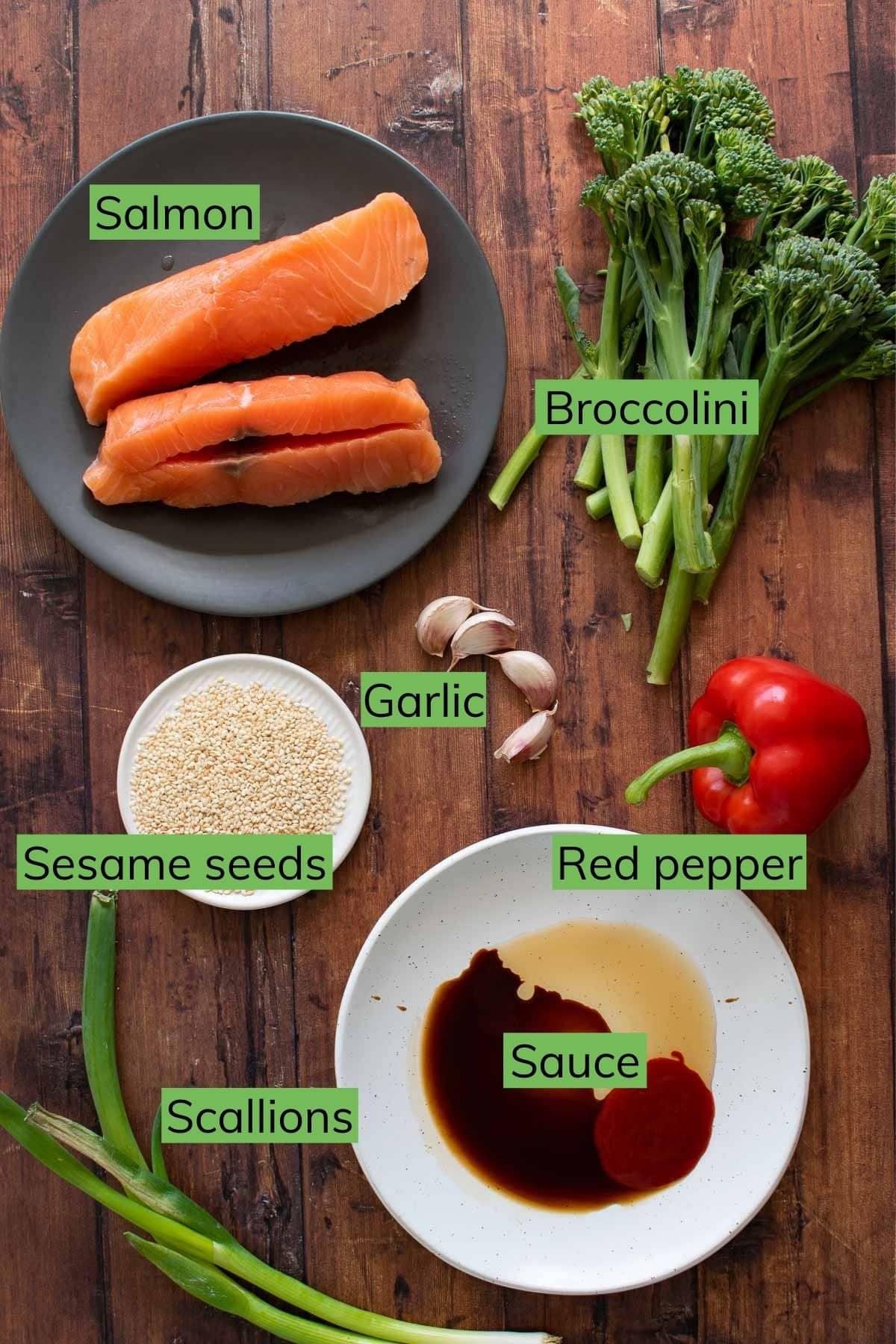 Ingredients to make a salmon stir fry.
