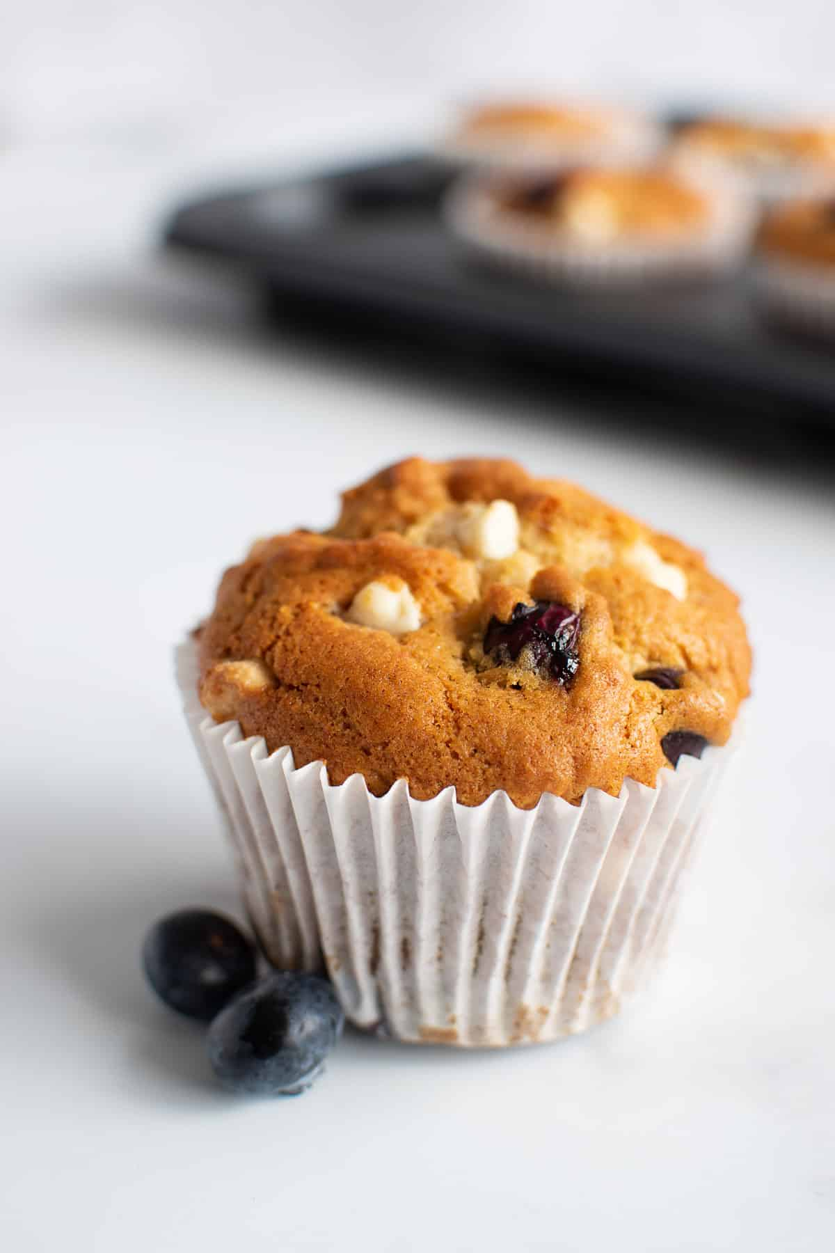 Close up of a muffin with white chocolate chips and blueberries.